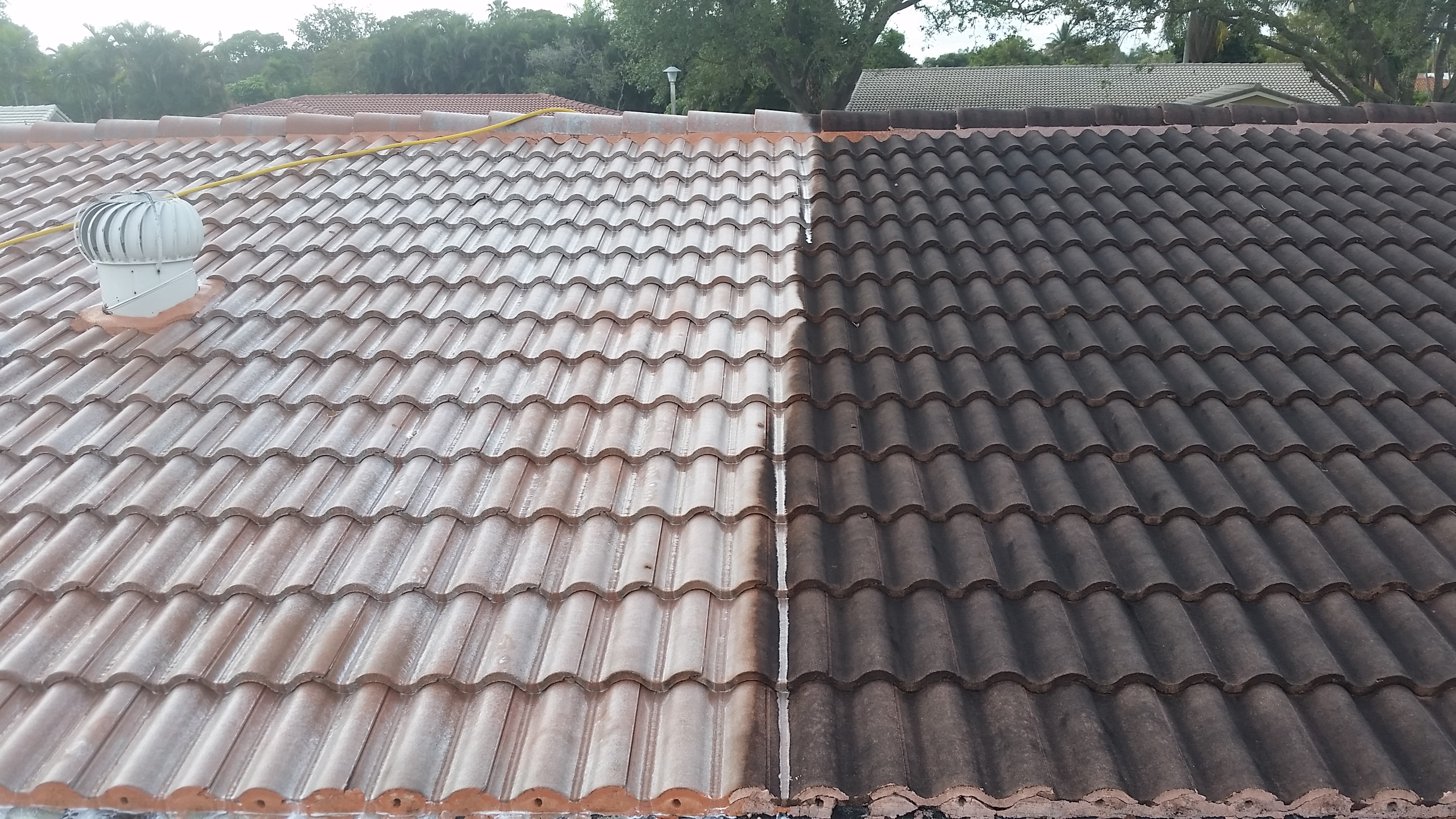Pressure Cleaning, Roof Cleaning, Chemical Cleaning, Power Washing ...